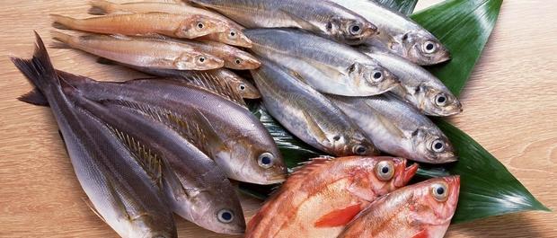 poisson pour maigrir